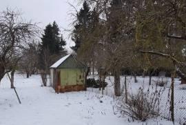Sodyba Šilėnuose , Šiaulių raj., Kalno 1