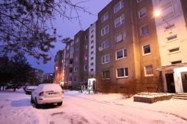 Jaukus butas Vilniuje, P. Žadeikos