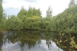 Sodyba Utenos rajone, Šikšnių kaime | House and Land