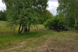 Sklypas. Šalia Kauno marių, apsuptas miško