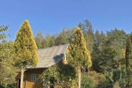 Nuostabios gamtos apsuptyje parduodamas sodo sklypas su namu.\nNuo sklypo takeliu iki Nėries vos 300