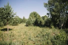 Namų valdos sklypas Grūte, Druskininkai